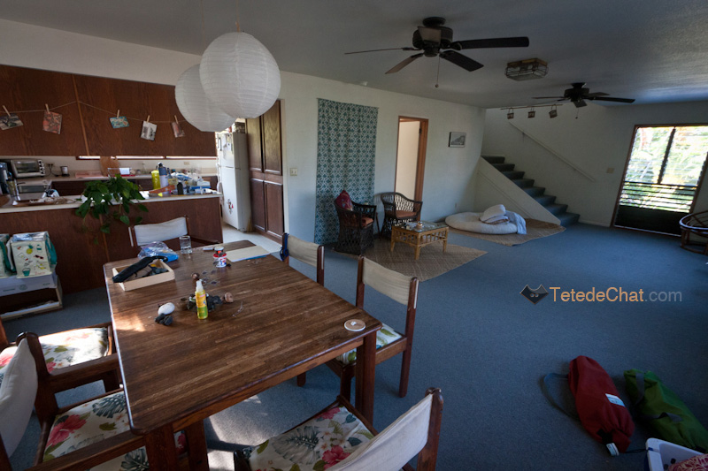 interieur_maison_grande_ile_hawai_2