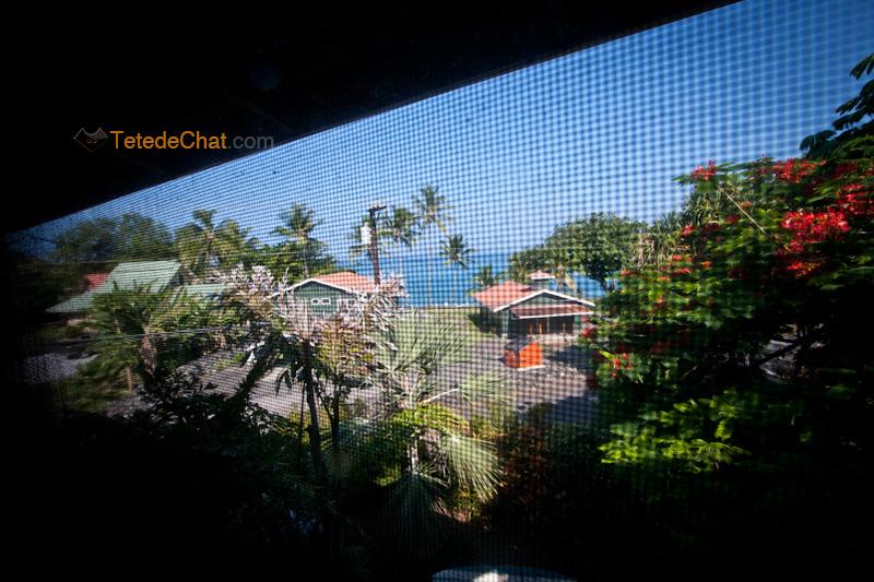 interieur_maison_grande_ile_hawai_vue_2