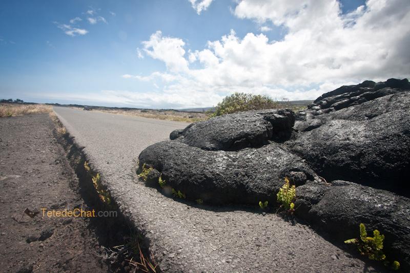 lave_sur_route_grande_ile_hawai_goudron