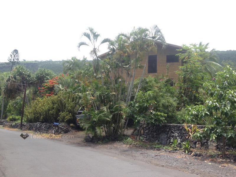ma_maison_grande_ile_hawai