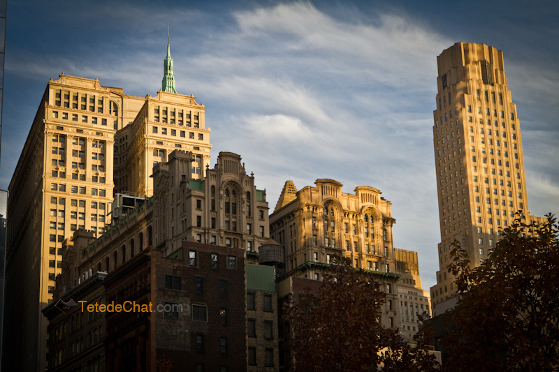 new_york_building_lumiere_3