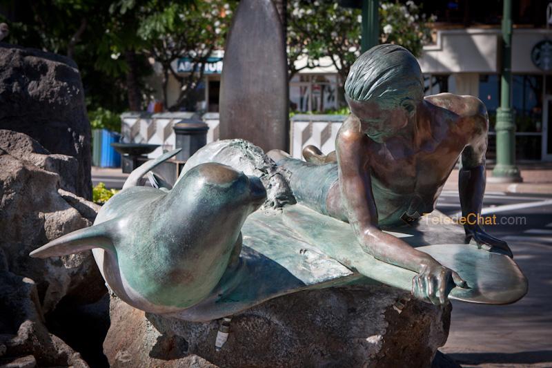 phoque_surfer_statue
