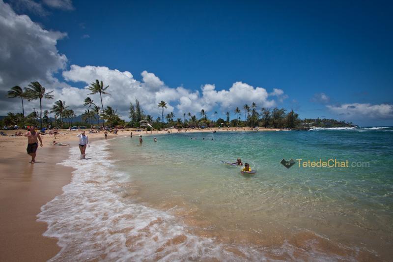plage_kiahuna_ocean