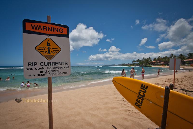 plage_kiahuna_surf