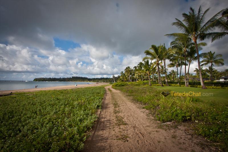 plage_nord_kauai