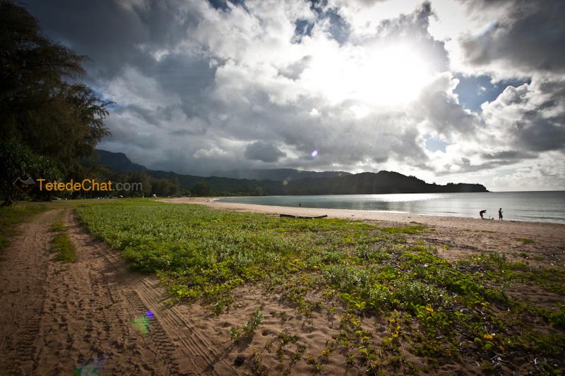 plage_nord_kauai_soleil