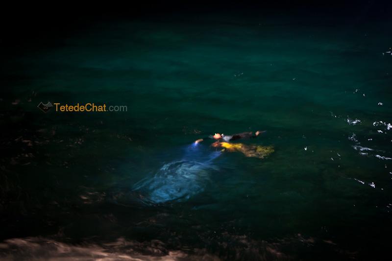 plongeurs_raie_manta_hawai_nuit