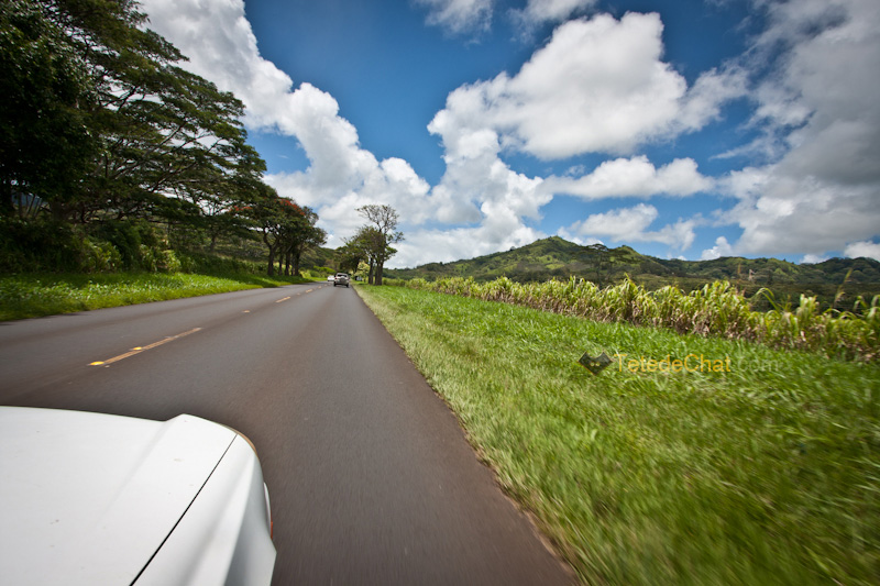 sur_la_route_kauai