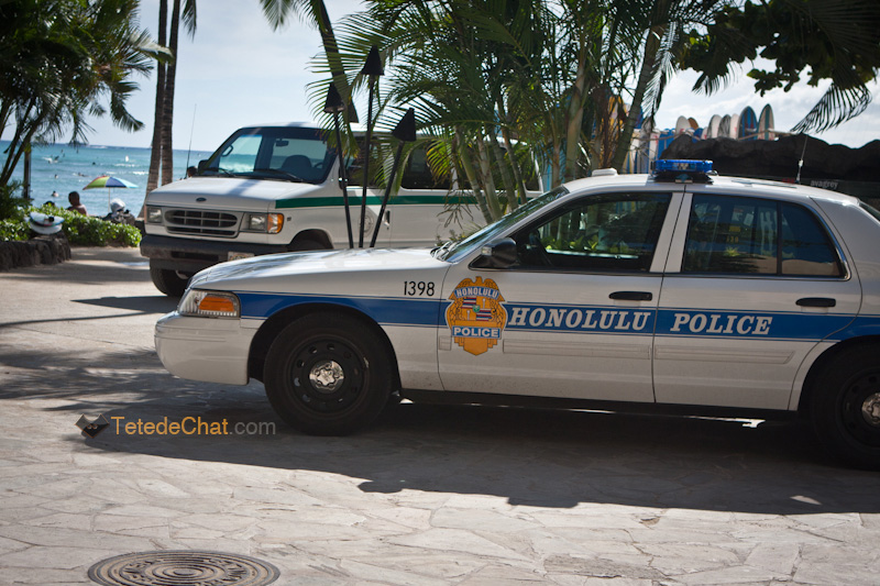 voiture_police_honolulu