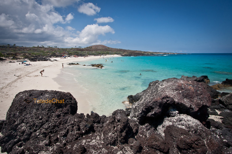 volcanique_plage_grande_ile_hawai_2