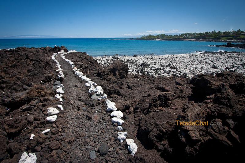 volcanique_plage_grande_ile_hawai_3