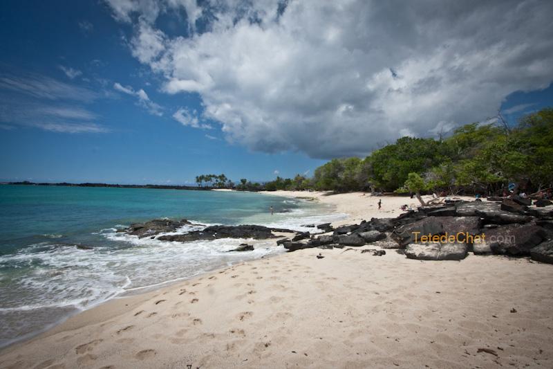 volcanique_plage_grande_ile_hawai_6