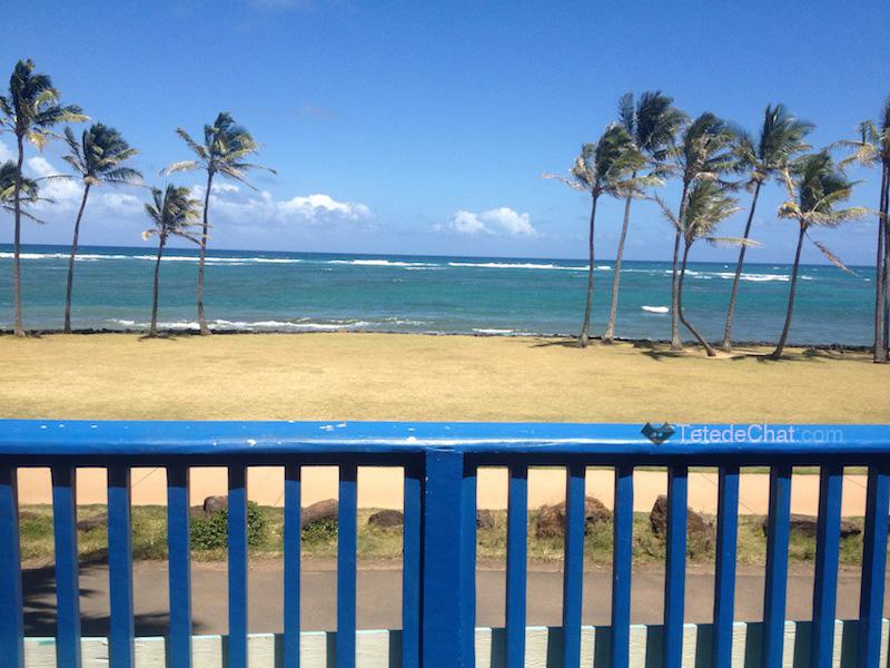 vue_backpacker_kauai