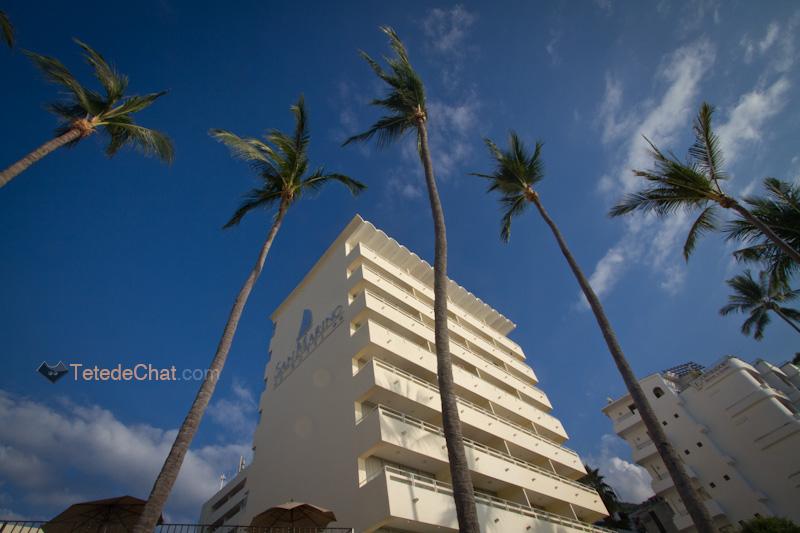 building_cocotiers_puerto_vallarta