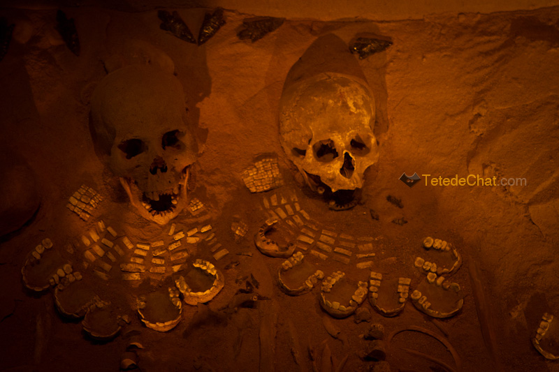 squelettes_musee_Teotihuacan