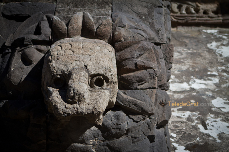 tete_serpent_Teotihuacan