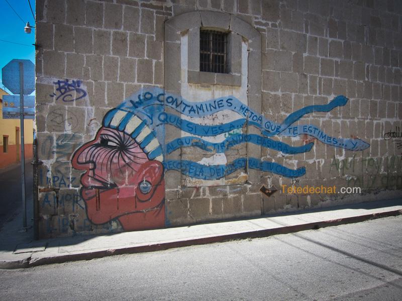 grafiti_xela
