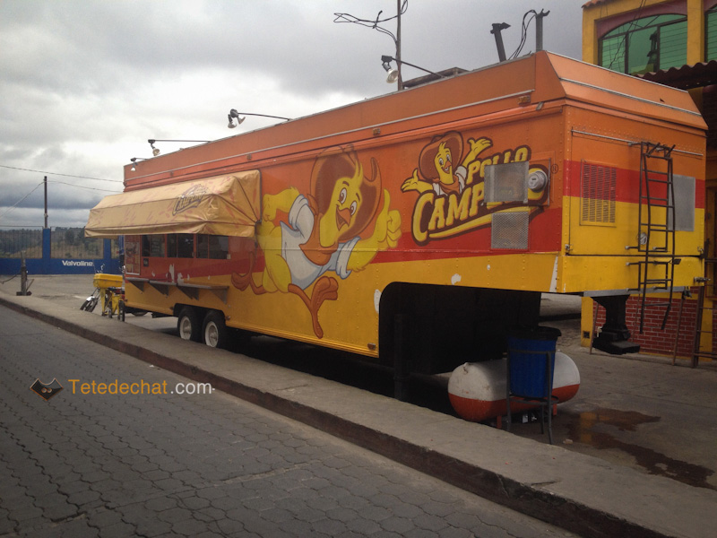 pollo_campero_portable