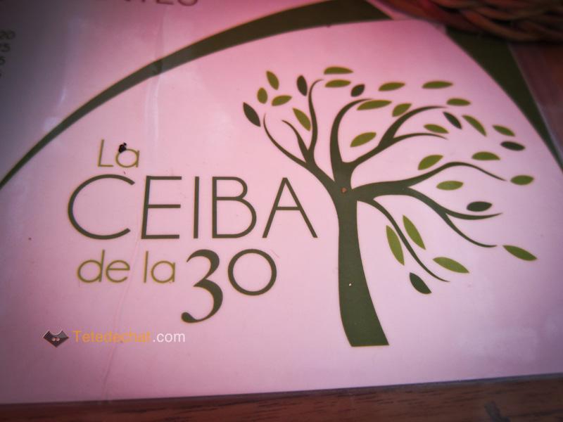 restaurant_playa_del_carmen_ceiba_30