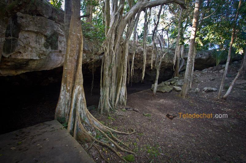 valladoid_cenote_top