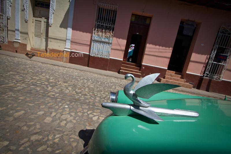 trinidad_insigne_voiture