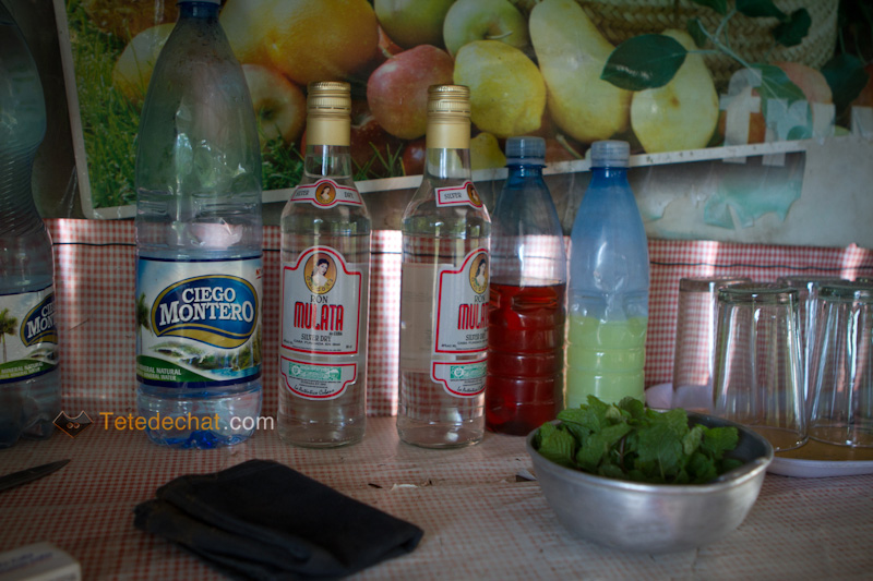 vinales_ingredients_mojito