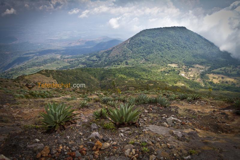 volcan_santa_ana_nature_trek