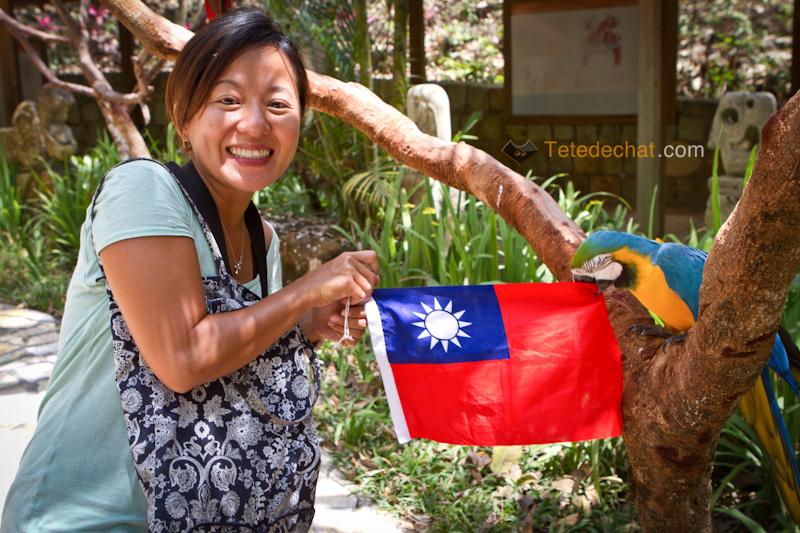 drapeau_taiwan_perroquet_hihi_parc_oiseaux_copan