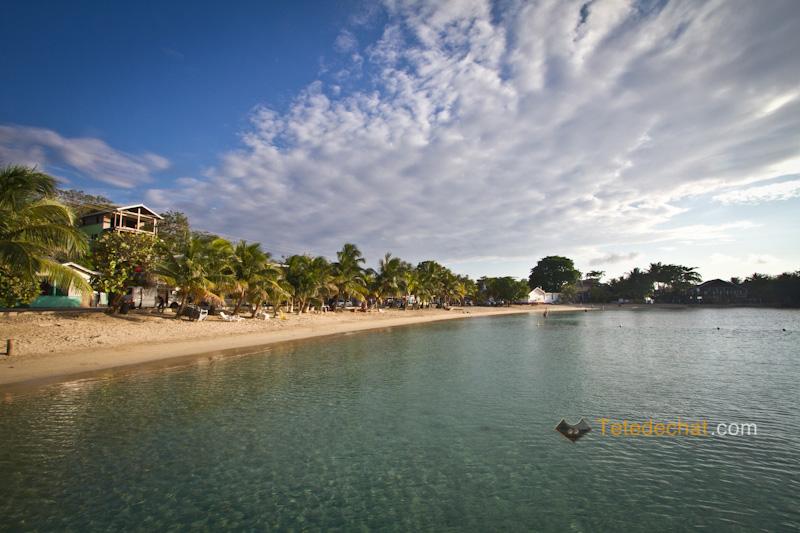 paysage_plage_roatan