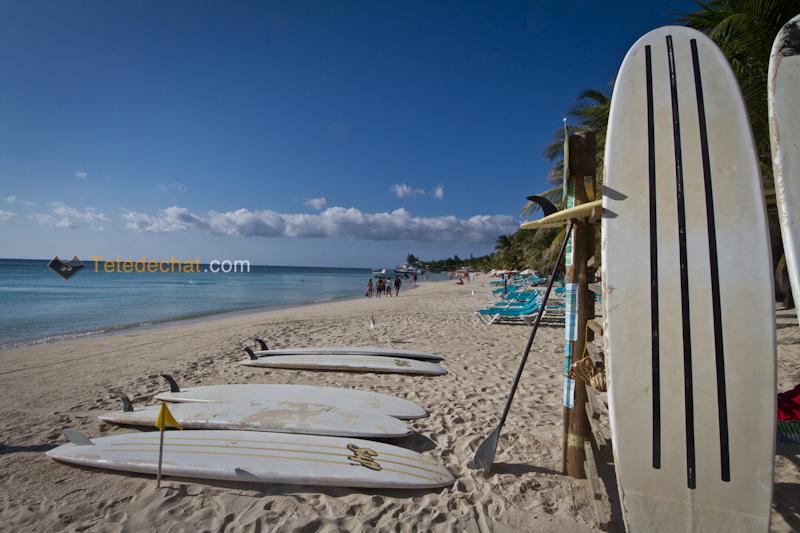 planches_surf_roatan