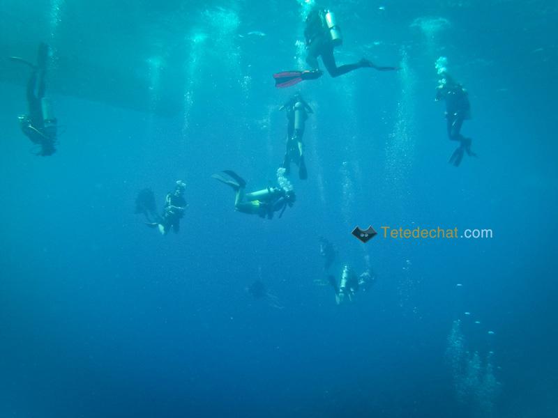 plongeurs_roatan