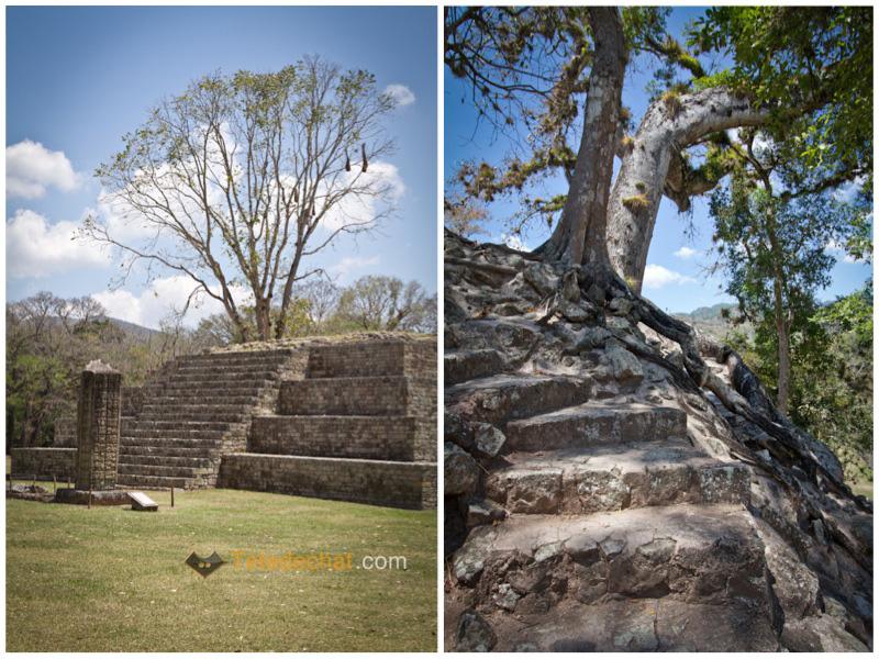 pyramide_copan