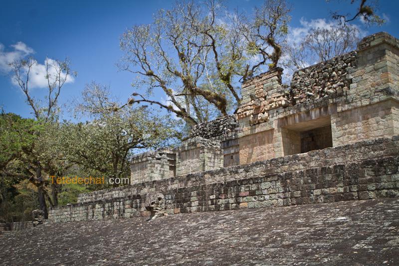 pyramide_ruines_copan_2