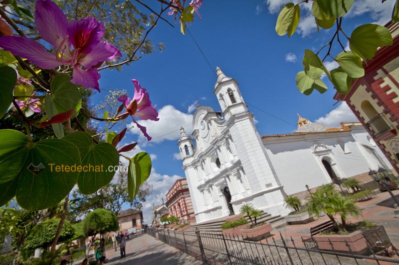santa_rosa_eglise_honduras_fleurs