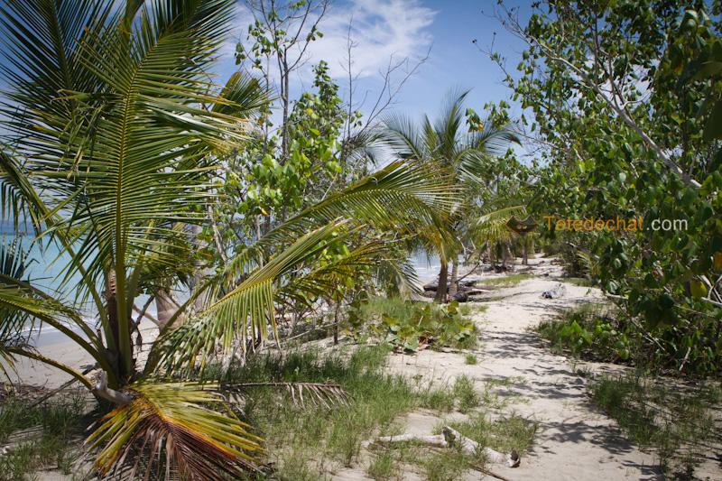 parc_national_cahuita_chemin_plage