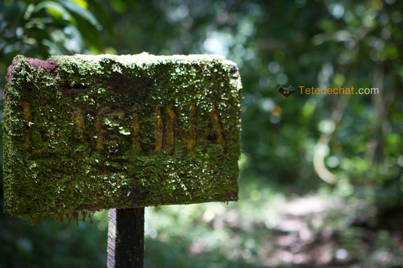 parc_piedras_blancas_costa_rica_panneau_laguna