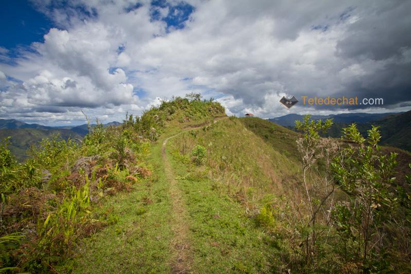 tierradentro_paysage_chemin