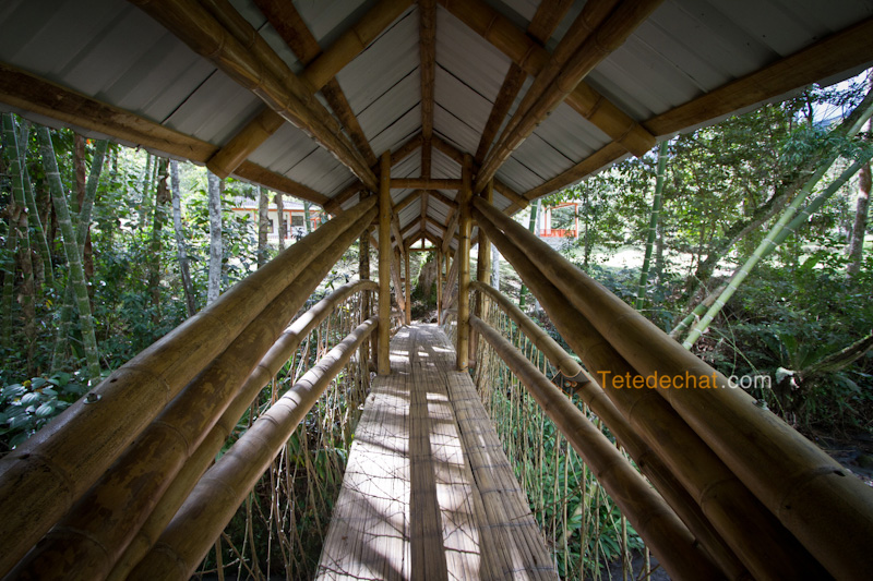 tierradentro_pont_bambou