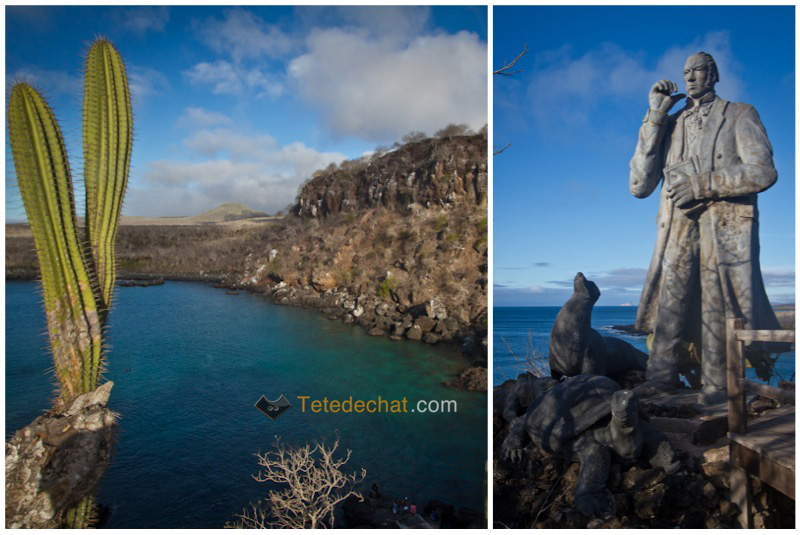 Cerro_Tijeretas_statue_charles_Darwin