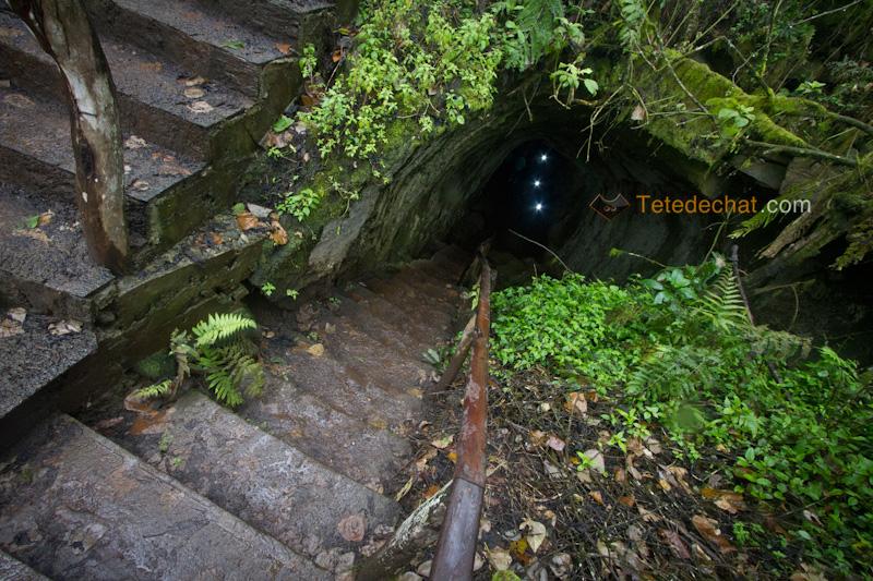 entree_tunnel_lave_santa_cruz