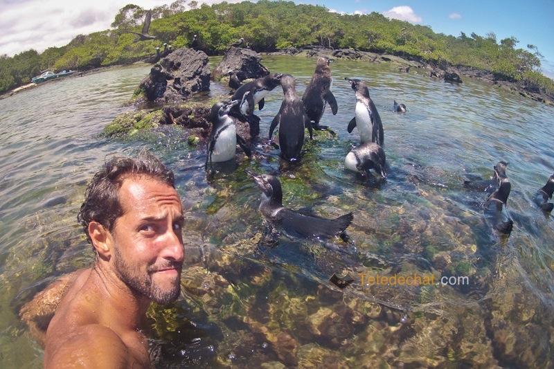 Galapagos : Isabela + Tips