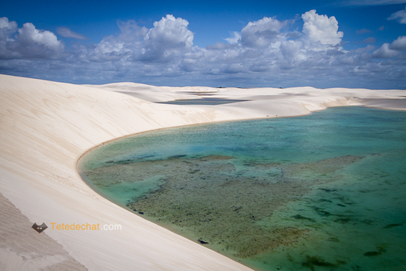 Le parc national de Lençois Maranhenses