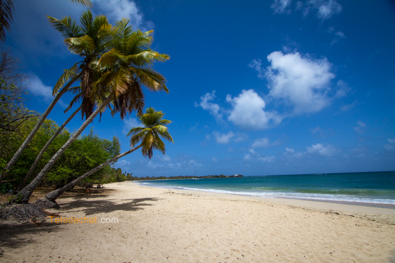 Ne rien voir en Martinique