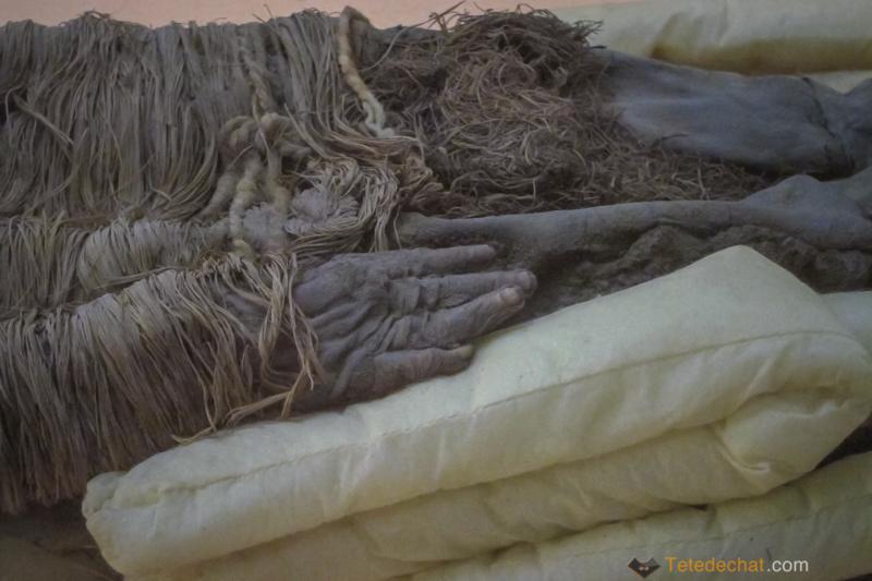 Les momies d'Arica