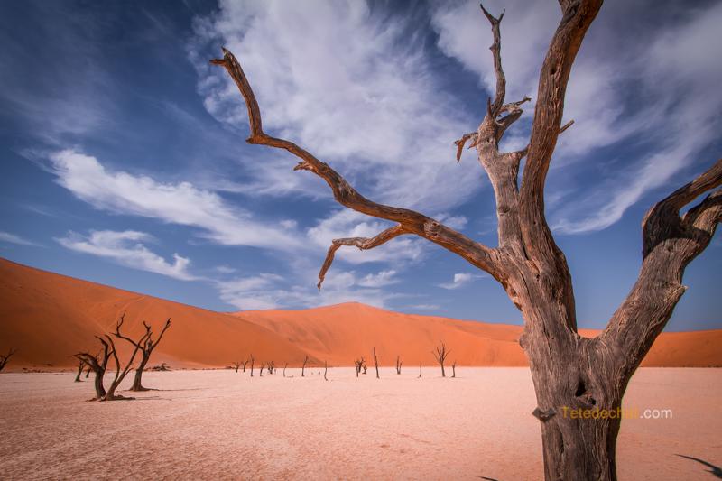Sossusvlei et les dunes rouges