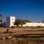 Le parc national Etosha (partie 1)