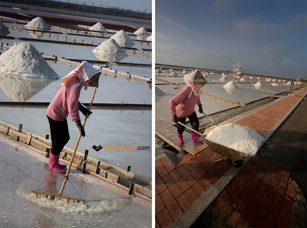 salt_workers