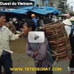 Nord-Ouest du Vietnam