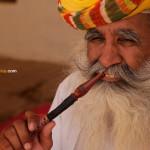 Jodhpur et le vrai faux safran