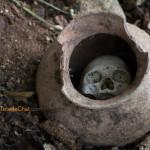 Tribu Konyak : Les derniers chasseurs de têtes